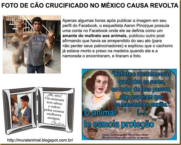 cao_cruxificado