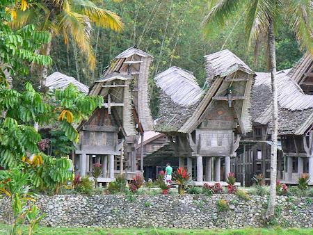 Tana Toraja: Traditional village