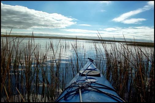 Kayaking Salt Pond & Nauset Marsh 097