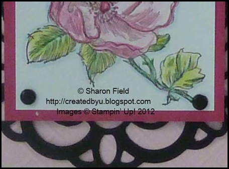 three greens were used to color the leaves on the happiness shared stamped image