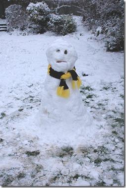 snowman 006