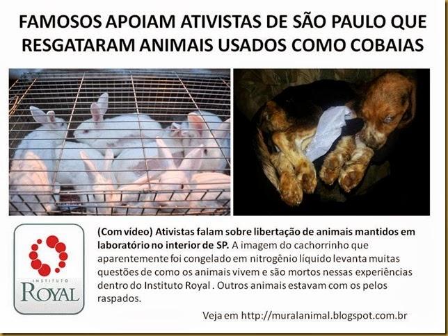 FAMOSOS APOIAM ATIVISTAS DE SÃO PAULO QUE RESGATARAM
