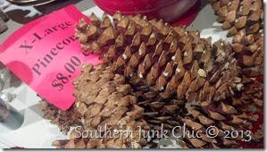 bobby's pine cones