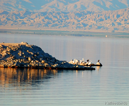 1. Salton sea beach-kab