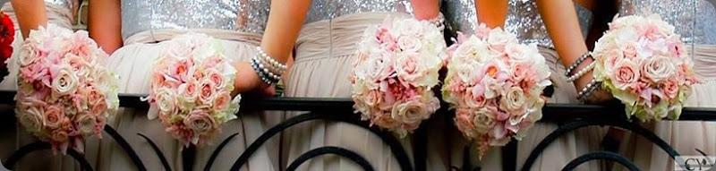 bridesmaids 524502_10151585332982181_1544270087_n heatherlily