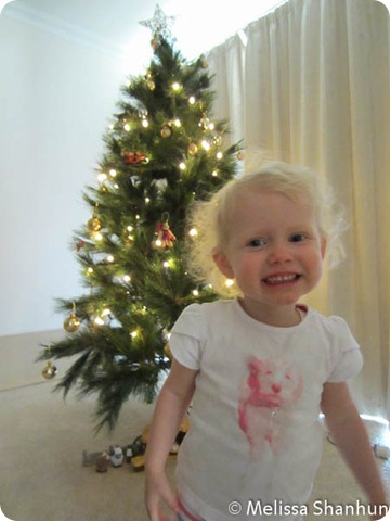 20111203 Christmas Tree 05