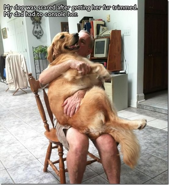awesome-pet-owners-19