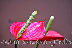 Glória Ishizaka - Jardim Botânico Nagai - Osaka 47