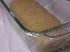 whole-wheat-harvest-bread 012