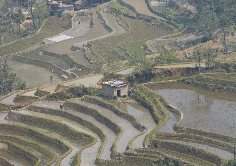 yunnan-rice-terraces-2