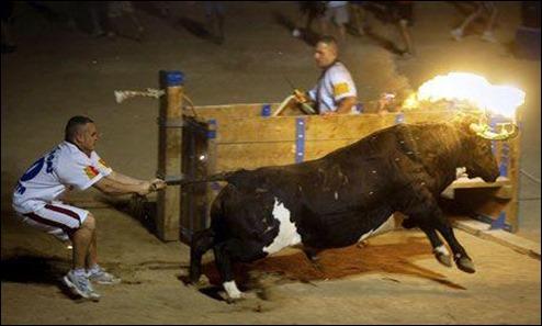 touro de fogo em espanha
