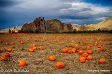 Autumn 10-27 - 59