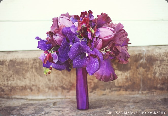 grape purple-bearded-iris-vanda-bouquet-aileen-tran karen tran