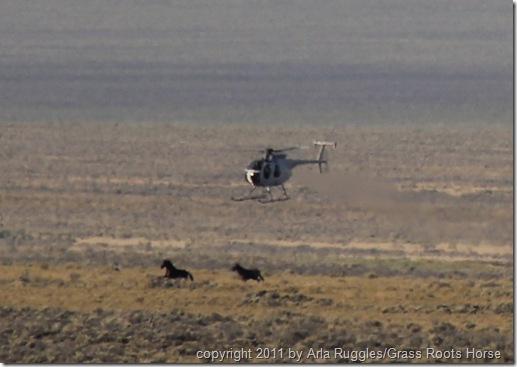 targets 2 2011.AUG.27 303 (3)