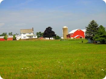 10-farm