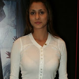 shilpa_shaklani_in_a_see-th.jpg