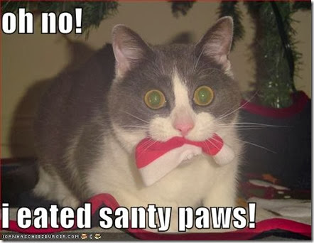 funny-pictures-i-ate-santa
