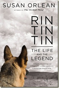 rin-tin-tin-cover