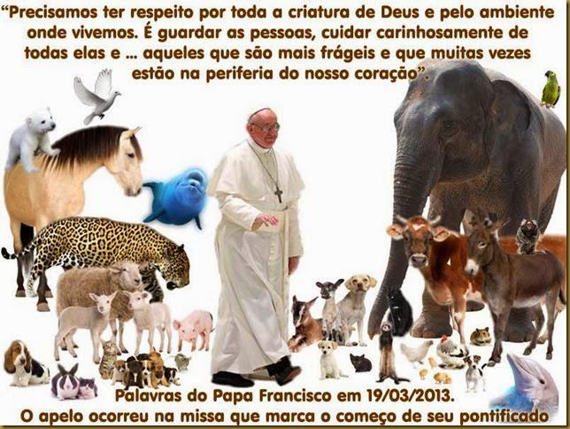 papa_animais
