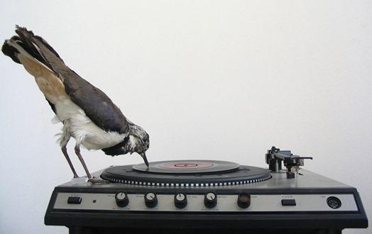 recordHome