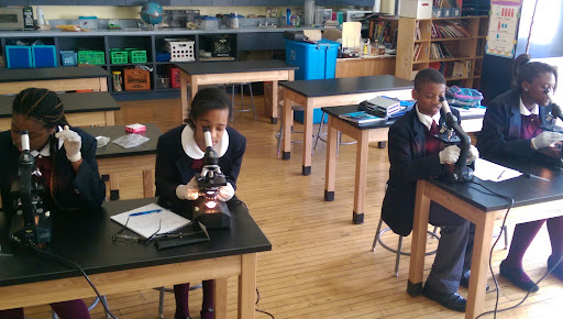 DC 2 looks at algae as they learn about unicellular organisms