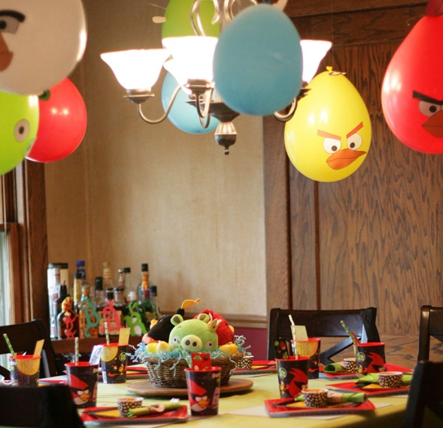 Angry Birds Party 081