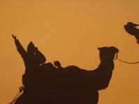 2008-11 Spoko Maroko