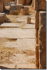 Oporrak 2011 - Jordania ,-  Jerash, 19 de Septiembre  52