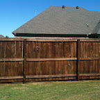 Weekend Project: Fence Staining