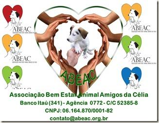 abeac_300 (12)