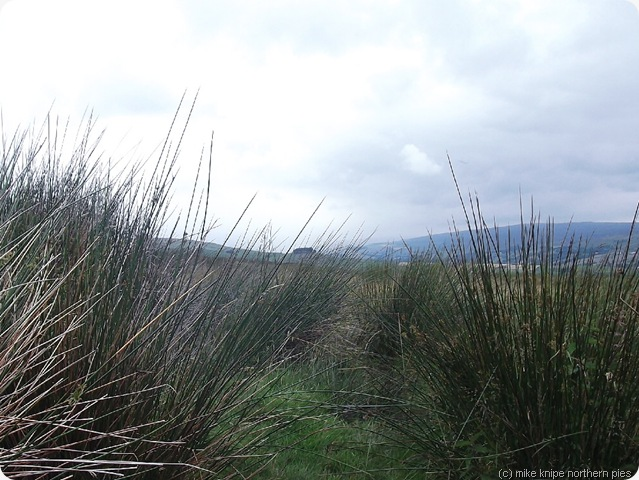 kirkcarrion from romaldkirk moor