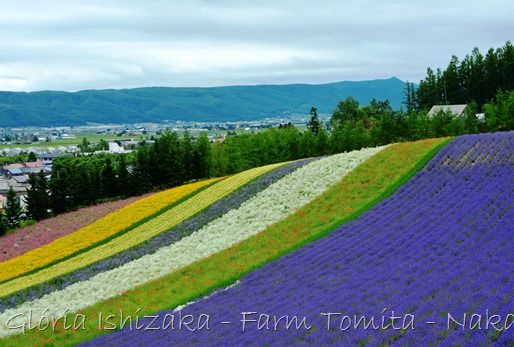Glória Ishizaka - Farm Tomita 21