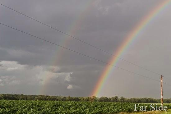 Double Rainbow (2)