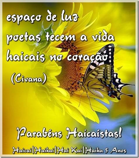 fh-haicai5anos-02