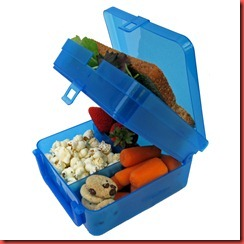 eco-friendly_green_waste-free_lunchbox-4