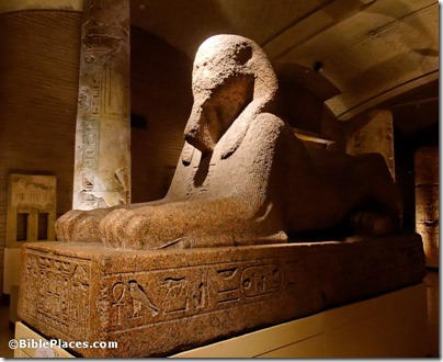 Sphinx, red granite, 19th Dynasty, from Memphis, tb072311783