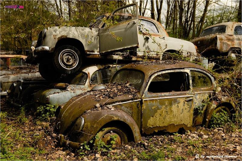 cars_023.jpg