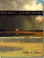 picnic-lightning