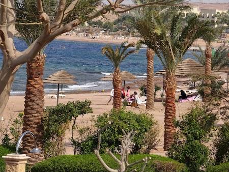 17. Plaja Tala Bay.JPG