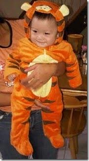 model costume tiger
