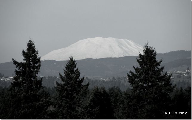 Mt. St. Helens from Powell Butte.  Powell Butte Nature Park.  Portland, Oregon.  March 8, 2011.  Photo of the Day, March 12, 2012.
