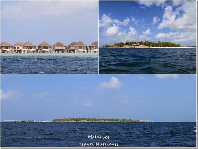 馬爾地夫居民島Mahibadhoo- Amazing Guesthouse (72)