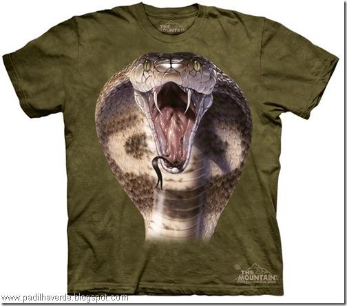 camisetas de Montain-26
