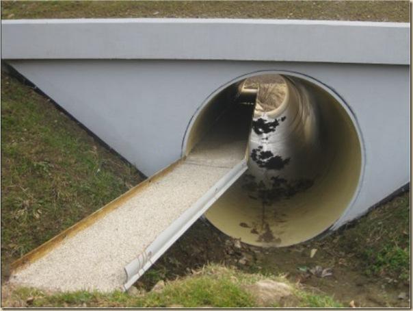 Ponts pour animaux - passages à faune (13)