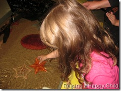 July16_StarFish