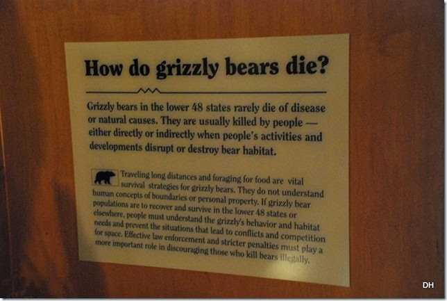 08-07-14 A Grizzly and Wolf Discovery Center (11)