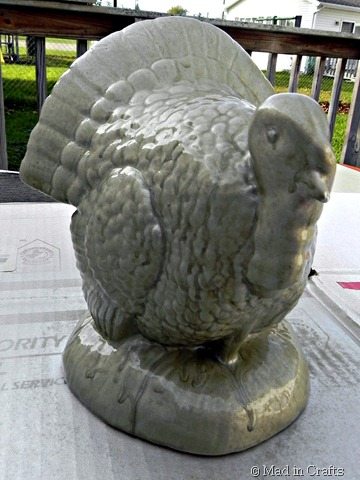 spray painted turkey