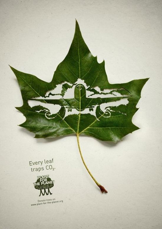 Plantemos para o Planeta 06