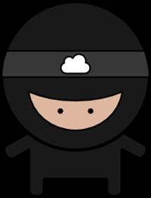 ninja_solo