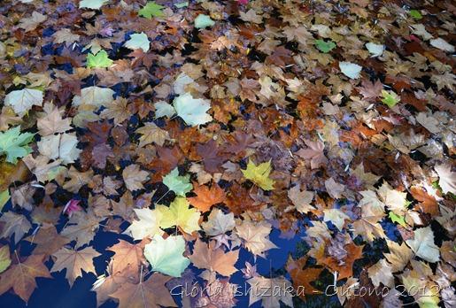 Glória Ishizaka - Folhas de Outono - Portugal 5